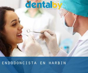 Endodoncista en Harbin