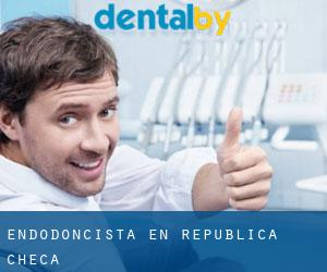 Endodoncista en República Checa